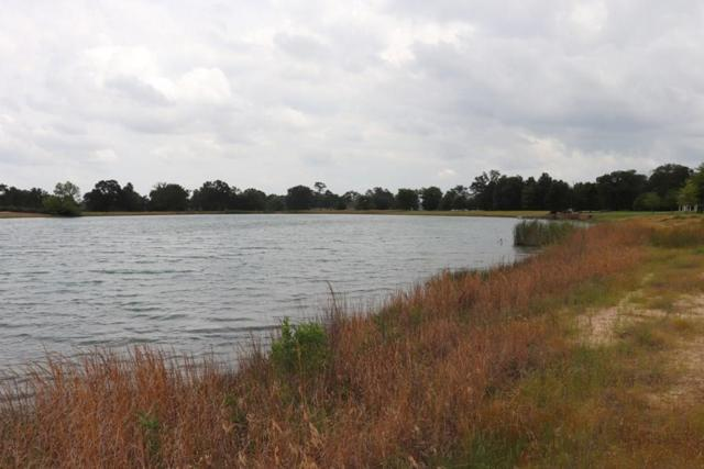 Lot 33 Pr 2712, Mount Pleasant, TX 75455 (MLS #14103574) :: RE/MAX Town & Country