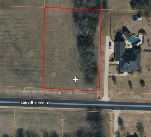 A20 Lake Breeze Drive, Mckinney, TX 75071 (MLS #14104125) :: Lynn Wilson with Keller Williams DFW/Southlake