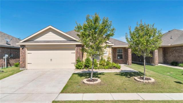 2061 Enchanted Rock Drive, Forney, TX 75126 (MLS #14104853) :: The Heyl Group at Keller Williams