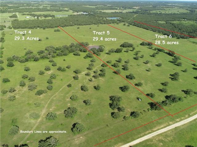 Tract 6 Hawthorn Road, Perrin, TX 76486 (MLS #14105204) :: The Heyl Group at Keller Williams