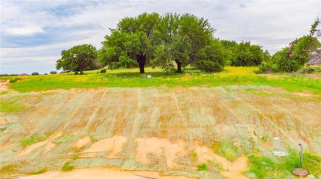 724 Coastal Meadows Court, Granbury, TX 76049 (MLS #14105226) :: RE/MAX Town & Country