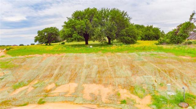 724 Coastal Meadows Court, Granbury, TX 76049 (MLS #14105226) :: Roberts Real Estate Group