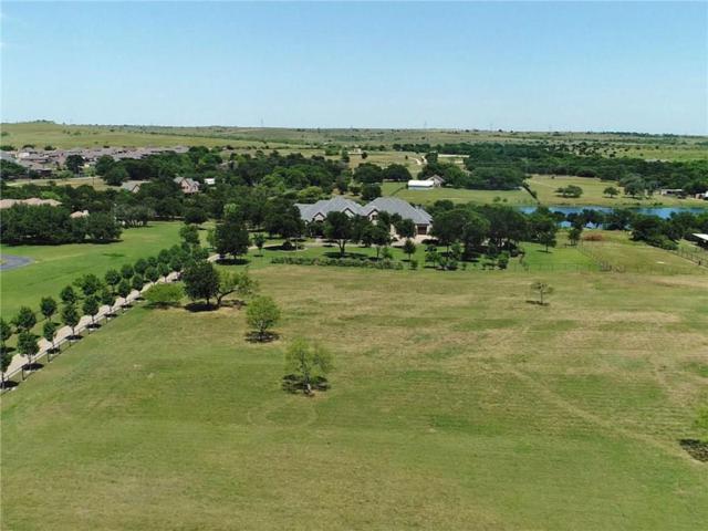 201 Wood Lake Road, Aledo, TX 76008 (MLS #14105829) :: Team Hodnett