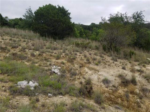 275 Hidden Lk, Bluff Dale, TX 76433 (MLS #14106409) :: RE/MAX Town & Country