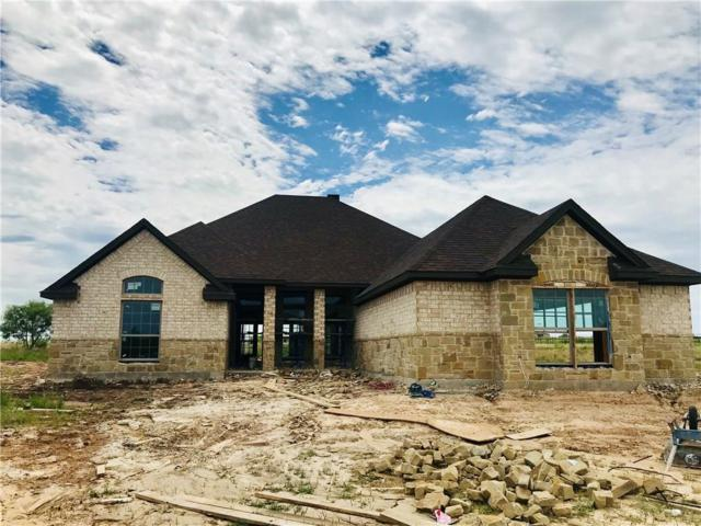 130 Esther Court, Millsap, TX 76066 (MLS #14106670) :: Hargrove Realty Group