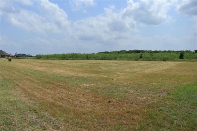 2903 Koscher Drive, Grand Prairie, TX 75104 (MLS #14107870) :: The Tierny Jordan Network