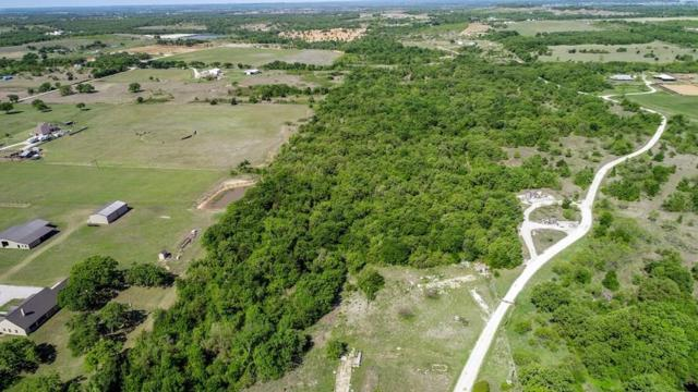 208 County Road 3526, Paradise, TX 76073 (MLS #14107910) :: The Heyl Group at Keller Williams