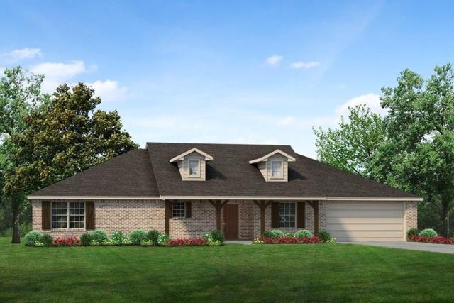 117 Springwood Ranch Loop, Springtown, TX 76082 (MLS #14108088) :: Lynn Wilson with Keller Williams DFW/Southlake