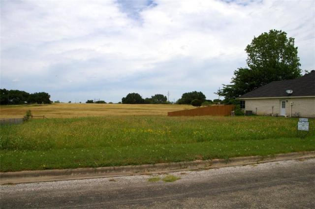 TBD K, Meridian, TX 76665 (MLS #14108723) :: The Heyl Group at Keller Williams