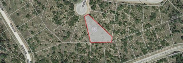 35 Southern Hills Drive N, Possum Kingdom Lake, TX 76449 (MLS #14109339) :: Kimberly Davis & Associates
