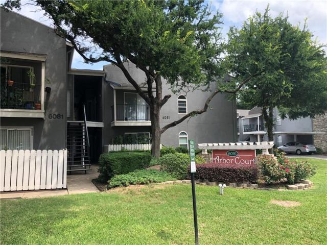 6065 Milton Street #234, Dallas, TX 75206 (MLS #14109394) :: RE/MAX Landmark
