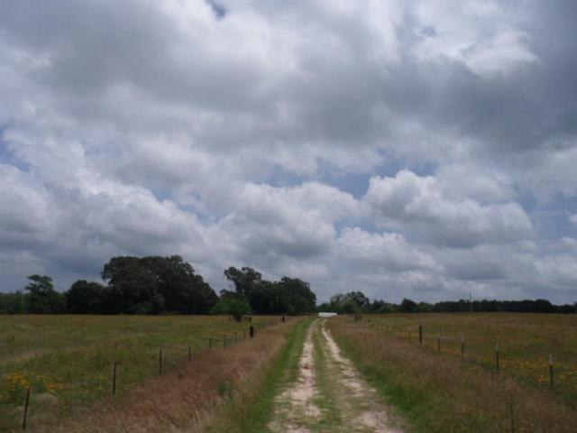 300 County Road 4740, Winnsboro, TX 75494 (MLS #14109956) :: RE/MAX Town & Country