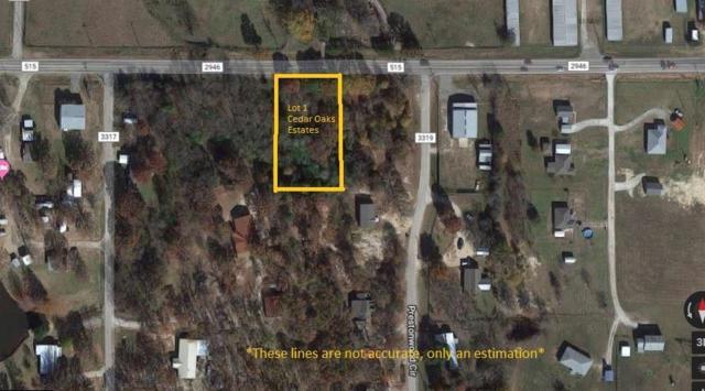Lot 1 Cedar Oaks Est. Fm 515, Emory, TX 75440 (MLS #14110692) :: Vibrant Real Estate