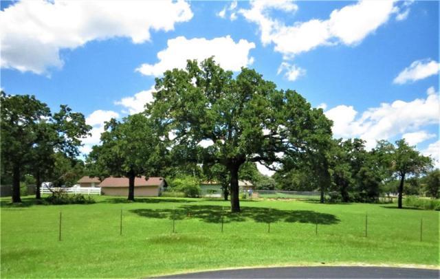108 Joyce Drive, Argyle, TX 76226 (MLS #14110785) :: North Texas Team | RE/MAX Lifestyle Property