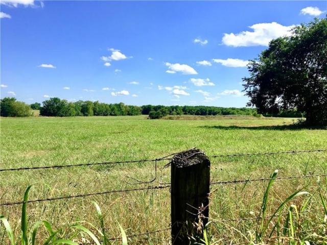 TBD County Rd 3805, Wolfe City, TX 75496 (MLS #14111011) :: Lynn Wilson with Keller Williams DFW/Southlake