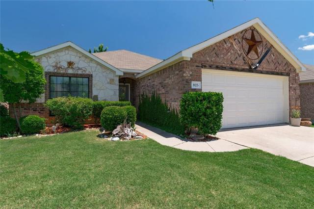 825 Hazels Way, Anna, TX 75409 (MLS #14111279) :: RE/MAX Town & Country