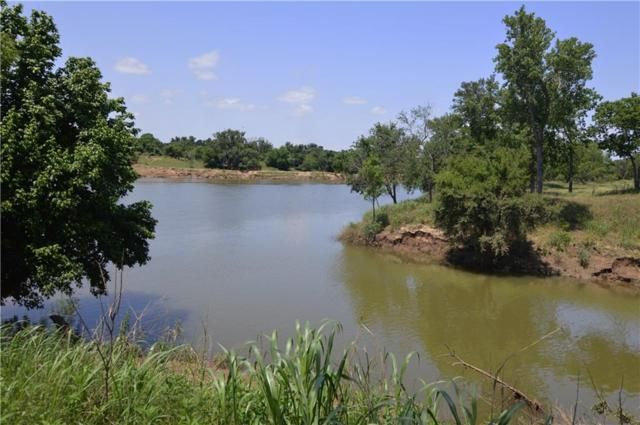 2828 Oaks Crossing Road, Mineral Wells, TX 76067 (MLS #14111466) :: RE/MAX Town & Country