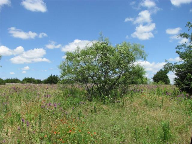 TBD County Rd 100, Purmela, TX 76566 (MLS #14111472) :: RE/MAX Town & Country