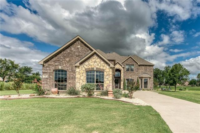 502 Audra Court, Cross Roads, TX 76227 (MLS #14111602) :: RE/MAX Town & Country