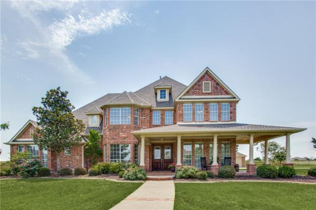 1317 Lakeview Drive, Celina, TX 75009 (MLS #14111663) :: The Heyl Group at Keller Williams