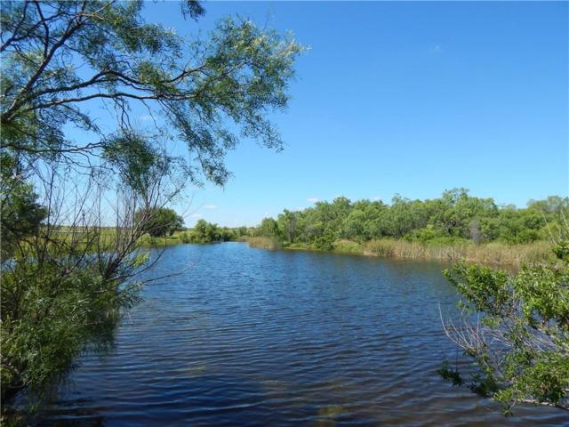 TBD Fm 503, Valera, TX 76884 (MLS #14111817) :: RE/MAX Town & Country