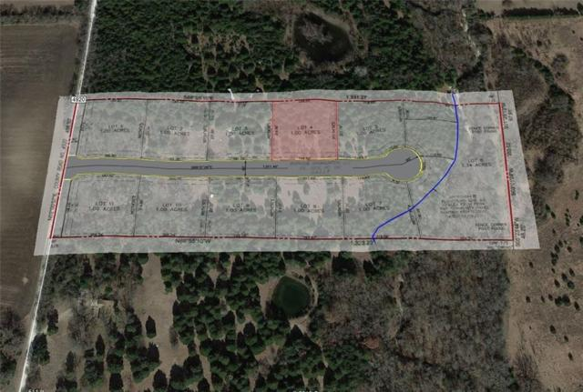 Lot4 County Road 4920, Leonard, TX 75452 (MLS #14111949) :: The Heyl Group at Keller Williams