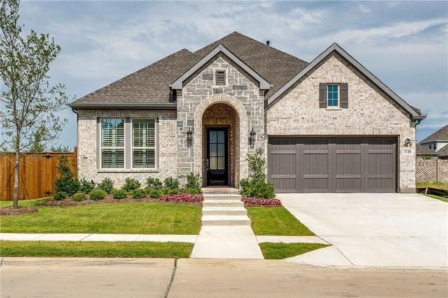 3128 Lexington Drive, Celina, TX 75009 (MLS #14112042) :: RE/MAX Town & Country