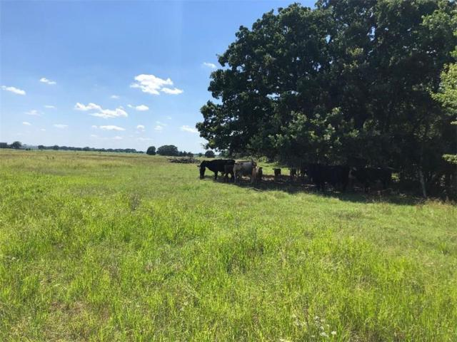 TBD County Rd 2285, Telephone, TX 75488 (MLS #14112174) :: The Real Estate Station