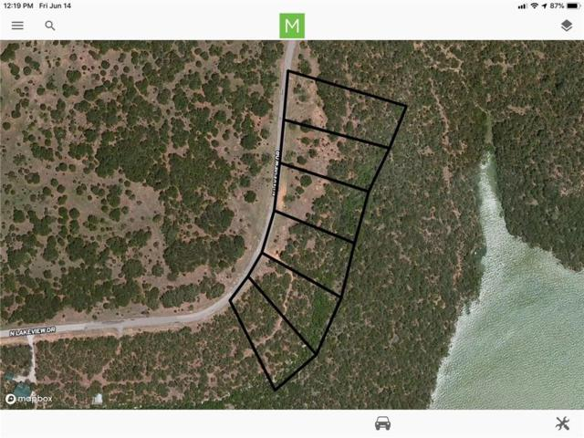 13 N Lakeview Drive, Palo Pinto, TX 76484 (MLS #14112183) :: The Real Estate Station