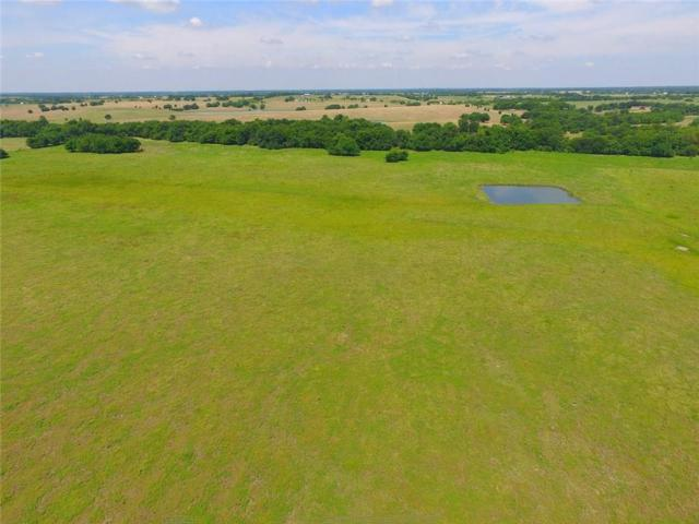 47 acre County Road 676, Leonard, TX 75452 (MLS #14112366) :: The Heyl Group at Keller Williams