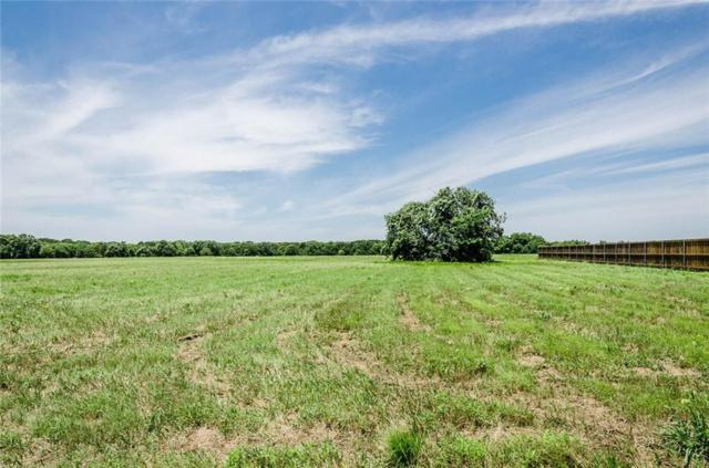 Lot 87 Sailboat Drive, Corsicana, TX 75109 (MLS #14112485) :: The Mitchell Group