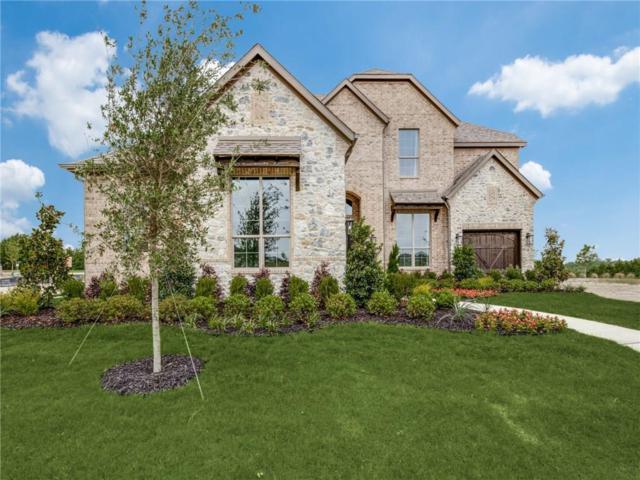1022 Ember Crest Drive, Rockwall, TX 75087 (MLS #14112519) :: Vibrant Real Estate