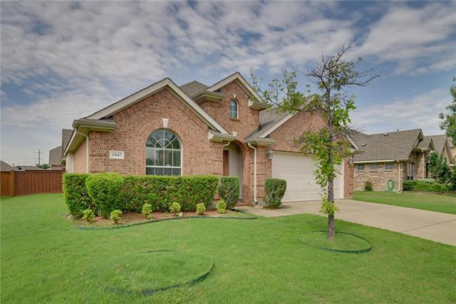 2847 Prado, Grand Prairie, TX 75054 (MLS #14112582) :: RE/MAX Landmark