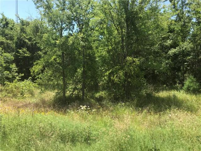 Lot 39 County Road 2310, Sulphur Springs, TX 75482 (MLS #14112648) :: RE/MAX Town & Country