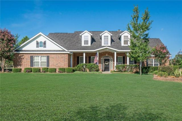 535 S Maxwell Creek Road, Murphy, TX 75094 (MLS #14113365) :: Vibrant Real Estate