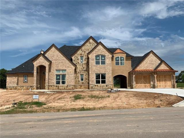 133 Saddle Horn Trail, Boyd, TX 76023 (MLS #14113960) :: The Heyl Group at Keller Williams