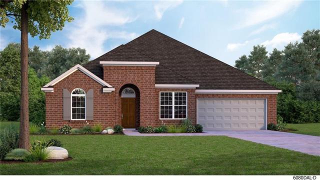 1622 Cherry Blossom Lane, Celina, TX 75078 (MLS #14113970) :: Real Estate By Design