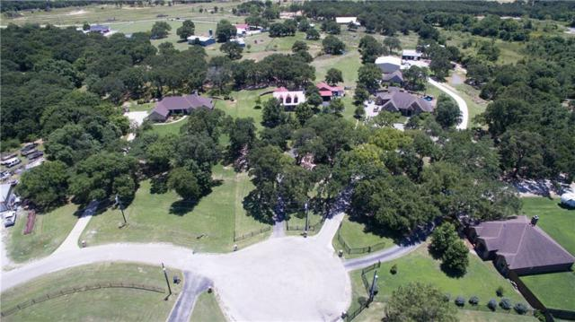 121 Sunny Oaks Court, Weatherford, TX 76087 (MLS #14114368) :: The Heyl Group at Keller Williams