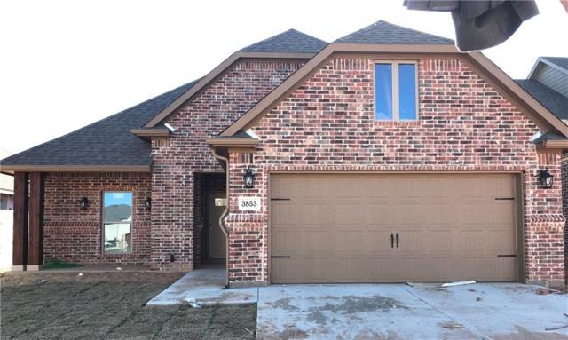 3853 Iron Ore Drive, Denison, TX 75020 (MLS #14114427) :: The Heyl Group at Keller Williams