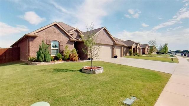 204 Shenandoah Court, Forney, TX 75126 (MLS #14114808) :: The Real Estate Station