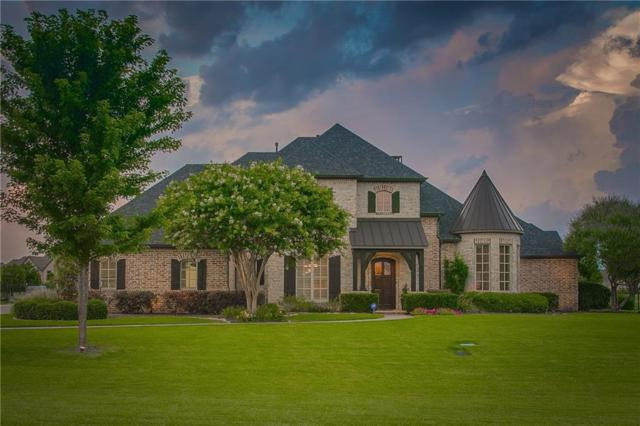 7003 Audubon Drive, Parker, TX 75002 (MLS #14114921) :: The Good Home Team