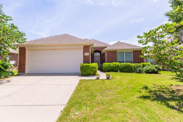 2733 Stallion Drive, Little Elm, TX 75068 (MLS #14115027) :: The Heyl Group at Keller Williams