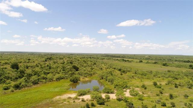 285 C.R. 334, Voss, TX 76888 (MLS #14115106) :: RE/MAX Town & Country