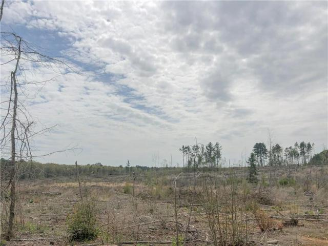 000 Cr 1779, No City, TX 75657 (MLS #14115152) :: All Cities USA Realty