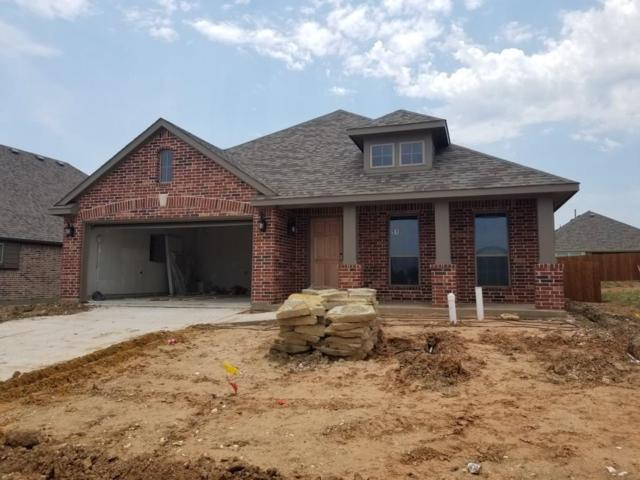 510 Woodbine Drive, Sherman, TX 75092 (MLS #14115329) :: The Heyl Group at Keller Williams