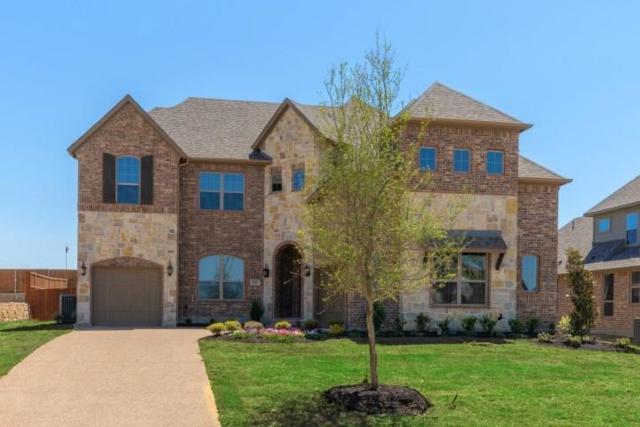 1810 Shavano Way, Prosper, TX 75078 (MLS #14115345) :: Real Estate By Design