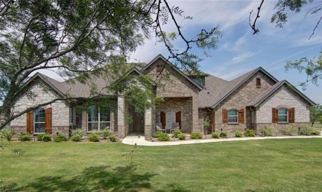127 Hackberry Pointe Drive, Brock, TX 76087 (MLS #14115776) :: Hargrove Realty Group