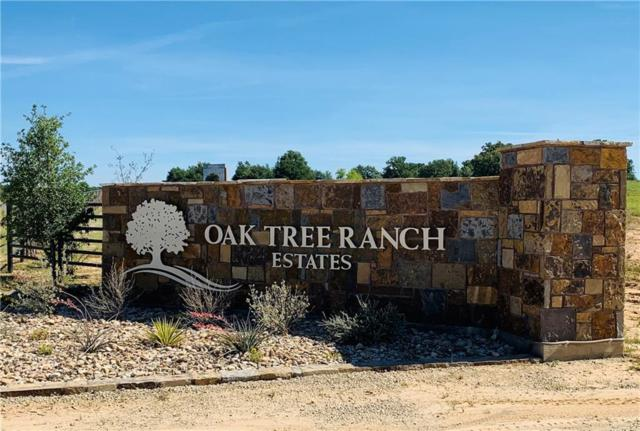 144 Oak Tree Drive Drive, Poolville, TX 76487 (MLS #14116026) :: The Heyl Group at Keller Williams