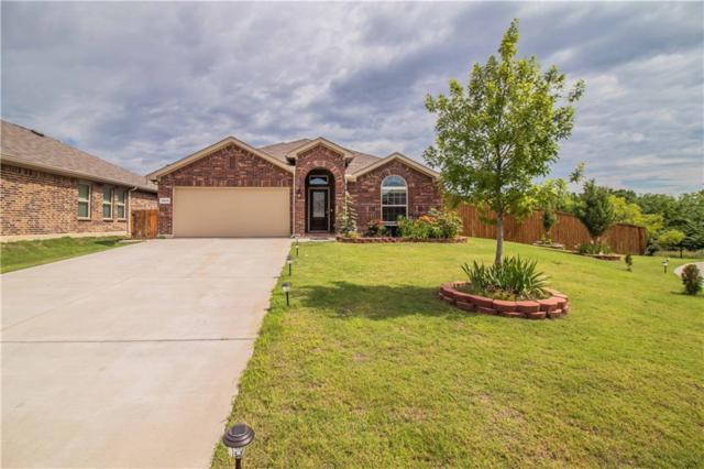 12013 Clearpoint Court, Frisco, TX 75036 (MLS #14116046) :: The Heyl Group at Keller Williams