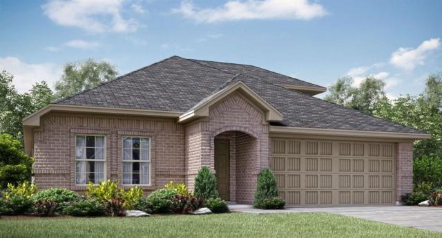 717 Overleaf Way, Arlington, TX 76002 (MLS #14116233) :: Vibrant Real Estate
